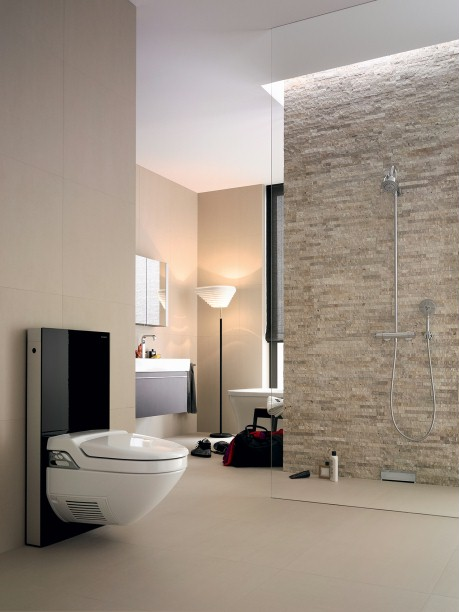 geberit monolith f r wand wc h he 101 cm. Black Bedroom Furniture Sets. Home Design Ideas